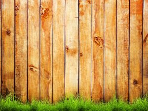 Green grass over wood fence