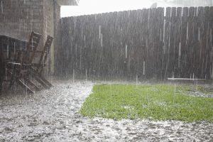 Heavy rain falling in backyard